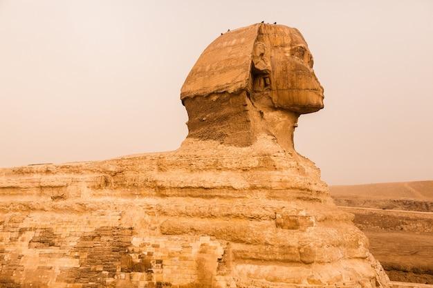 Landschap in egypte. piramide in woestijn. afrika. wonder van de wereld