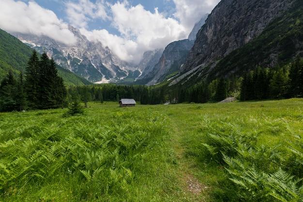 Landschap in krnica-vallei