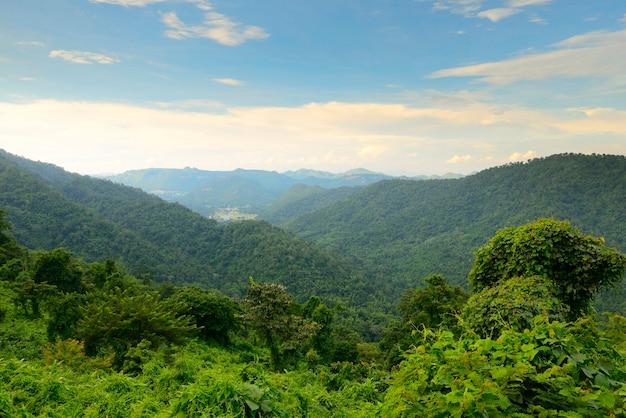 Landschap khao yai nation park van thailand tropische regenwouden, berglandschap