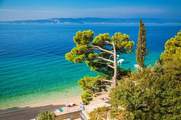 Landschap met adriatische overzees in brela-toevlucht, dalmatië, kroatië