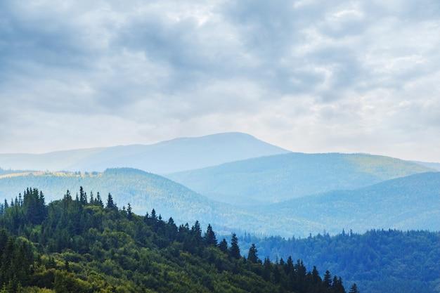 Landschap met beboste bergen en bewolkte hemel