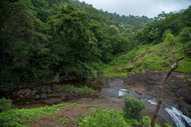 Landschap met bergen, bomen en een rivier vooraan