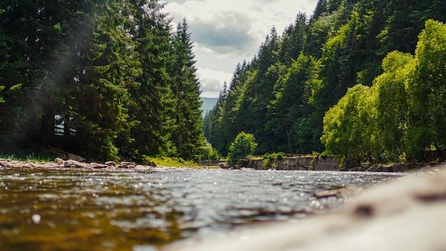 Landschap met bergen, bos en een rivier ervoor. prachtig landschap natuur