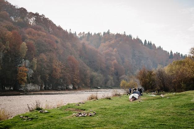 Landschap met bos, rivier en stenen