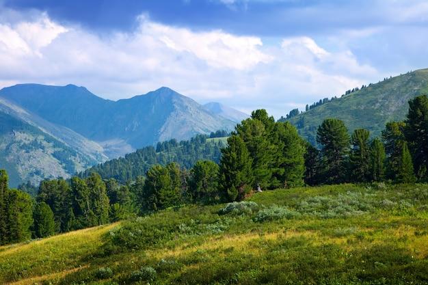 Landschap met bosgebergte