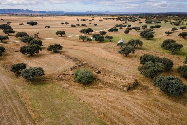 Landschap met een oude veestructuur in de dehesa de la luz spanje