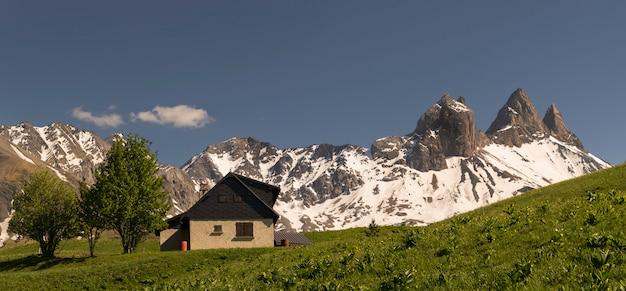 Landschap met flores op de voorgrond en bergen croix de fer op de achtergrond in de franse alpen