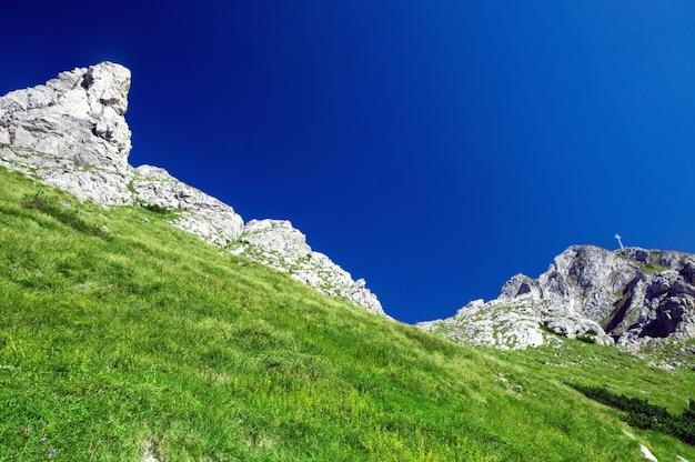 Landschap met gras en rotsachtige bergen