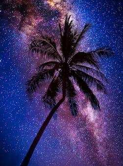 Landschap met melkweg. nachtelijke hemel met sterren en silhouet kokospalm boom op de berg. foto met lange belichtingstijd.