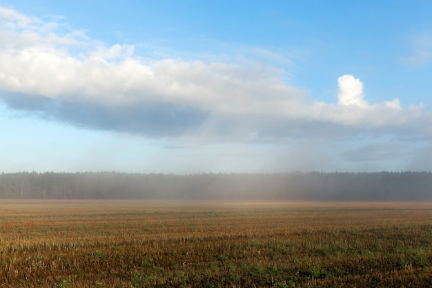 Landschap met mistige ochtend op een glooiend landbouwgebied