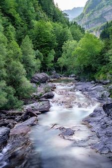 Landschap met rivier en bos met groene bomen. zijdeachtig kristalhelder water en lange blootstelling. ordesa pyreneeën.