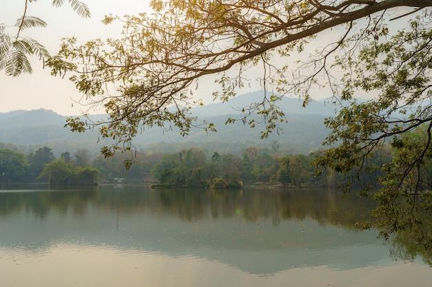 Landschap met uitzicht op het meer bij ang kaew chiang mai university in de vervuilingsmist in natuurbos bergstof luchtvervuiling op 2,5 of kleine deeltjes pm 2,5 micron achtergrond met witte wolk in thailand