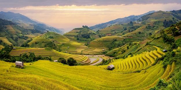 Landschap terrasvormig rijstveld in de buurt van sapa, noord-vietnam