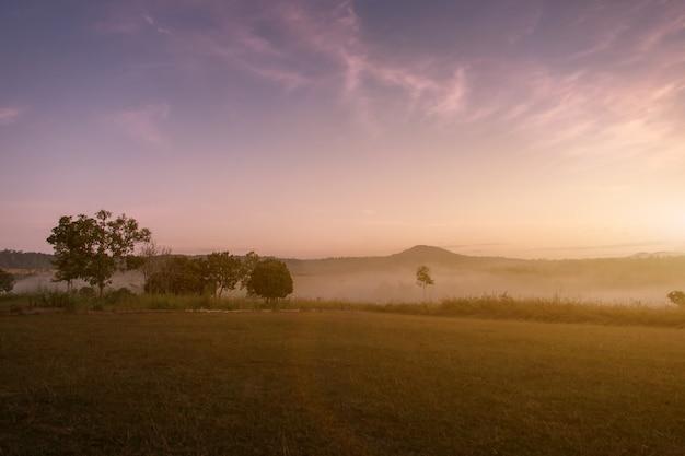 Landschap van berg en mist in de ochtend bij khao-kho phetchabun, natiepark van thailand