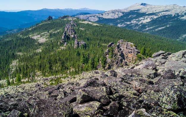 Landschap van bergenpieken met rotsen en bos