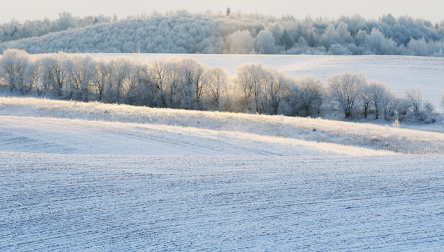 Landschap van besneeuwde heuvels in de winter