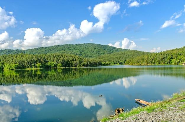 Landschap van dam en meer met boom