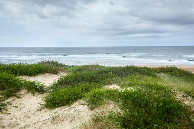 Landschap van de franse atlantische kust