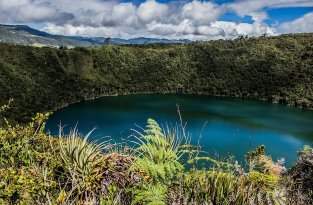 Landschap van de laguna del cacique guatavita omgeven door groen onder het zonlicht in colombia