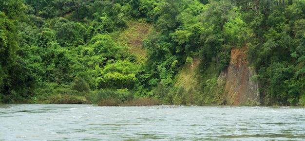 Landschap van de rivier stroomt uit het tropische bos.