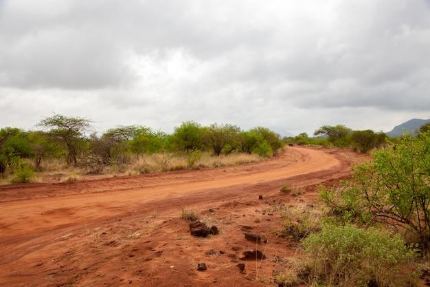 Landschap van de savanne, op safari in kenia, rode aarde weg
