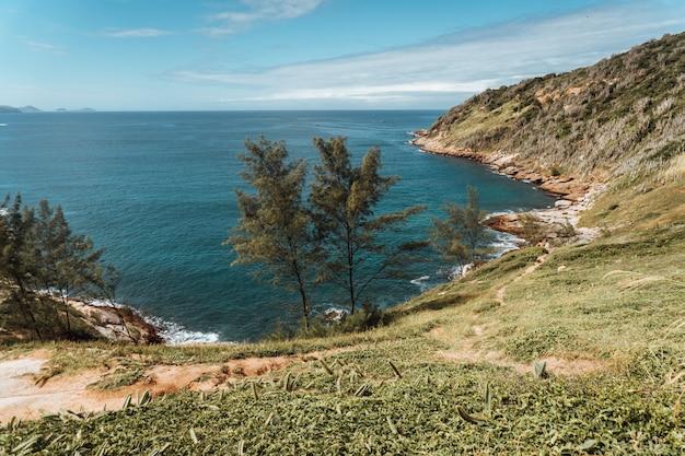 Landschap van de zee omgeven door heuvels bedekt met groen in rio de janeiro in brazilië