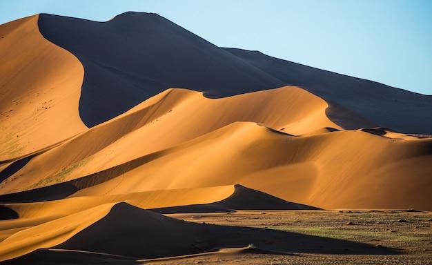 Landschap van duinen in de woestijn