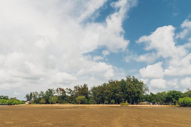 Landschap van eb met groene berg, wolkenhemel op achtergrond en mangrovebos op uitloper.
