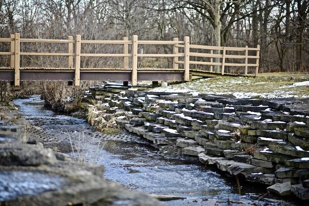 Landschap van een brug over een rivier midden in een bos