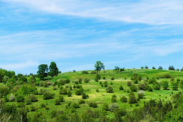Landschap van een groen veld met bomen en drijvende wolken