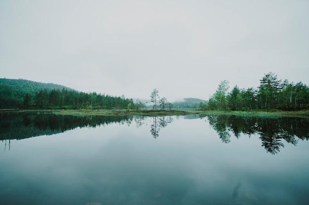 Landschap van een meer dat door bomen wordt omringd