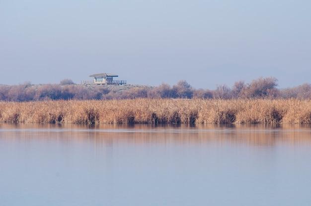 Landschap van een meer met riet en herfstbomen en een huis dat het overheerst
