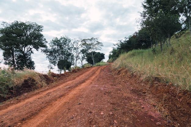 Landschap van een onverharde weg in misiones, argentinië.