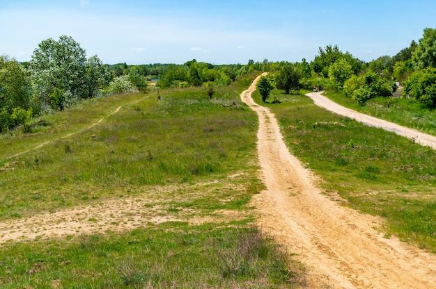 Landschap van een open veld met bomen en een onverharde weg die overdag is vastgelegd