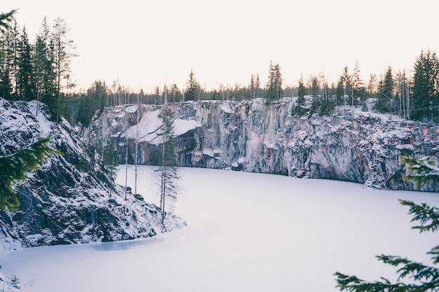 Landschap van een prachtig winterbos. besneeuwde rustige kloof