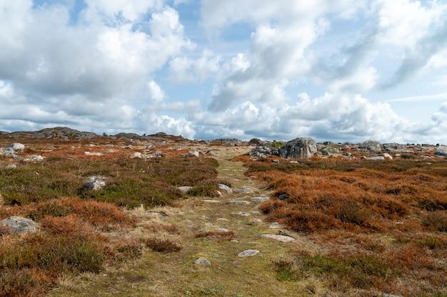 Landschap van een veld bedekt met gras en rotsen onder een bewolkte hemel overdag