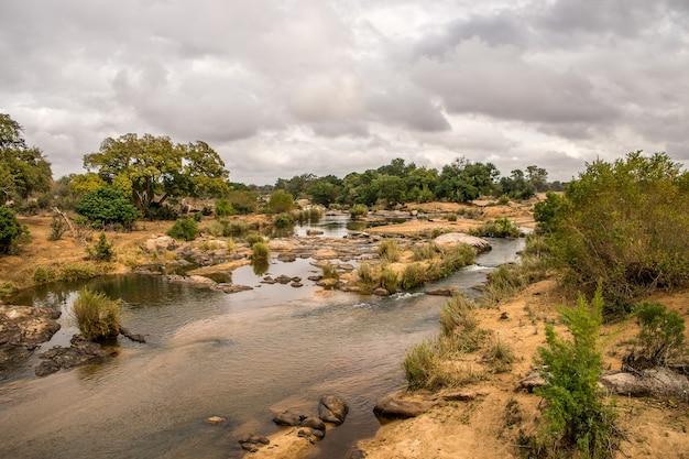 Landschap van een veld bedekt met groen en water onder een bewolkte hemel