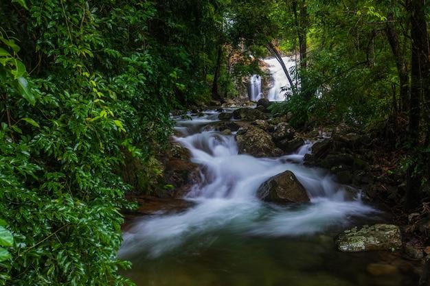 Landschap van een waterval in een forest