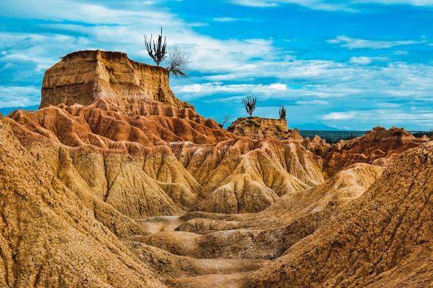 Landschap van een woestijn