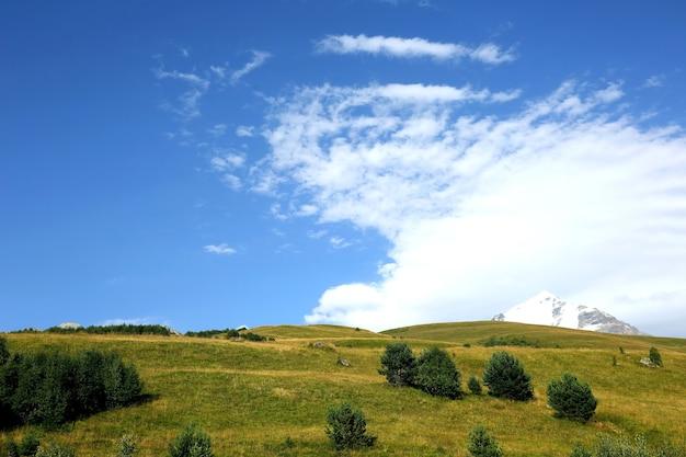 Landschap van groen gras en besneeuwde bergen