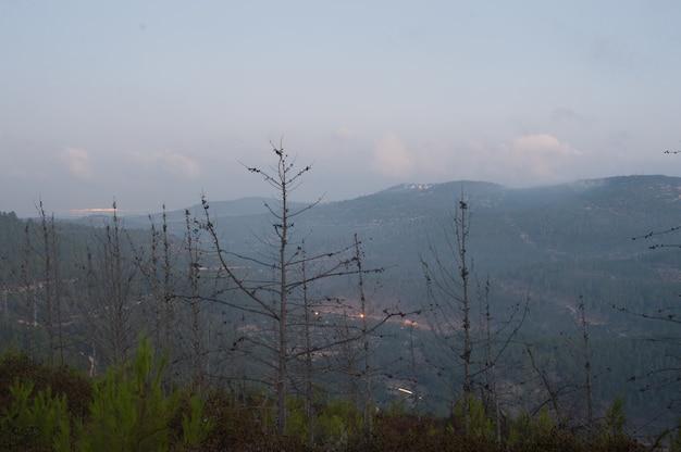 Landschap van heuvels bedekt met bossen, mist en lichten onder een bewolkte hemel tijdens de avond