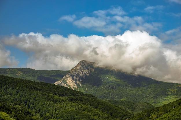 Landschap van heuvels bedekt met bossen onder het zonlicht en een bewolkte hemel