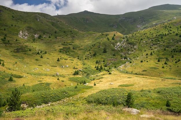 Landschap van heuvels bedekt met gras en bomen onder een bewolkte hemel en zonlicht overdag