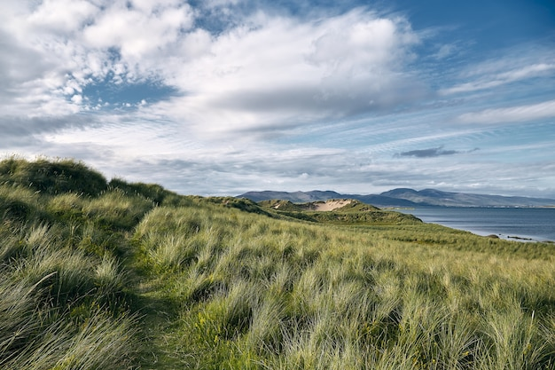 Landschap van heuvels bedekt met gras, omringd door het rossbeigh strand en de zee in ierland