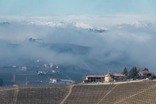 Landschap van heuvels met wijngaarden met mist en met sneeuw bedekte bergen