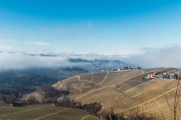 Landschap van heuvels met wijngaarden met mist en met sneeuw bedekte bergen Premium Foto