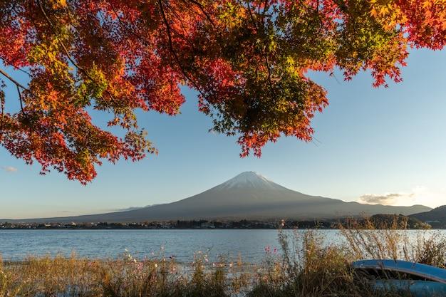 Landschap van mening de berg fuji en het heldere rode kader kawaguchiko van het esdoornblad
