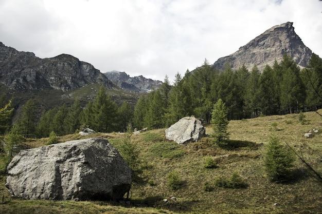 Landschap van rotsen omgeven door groen onder een bewolkte hemel overdag