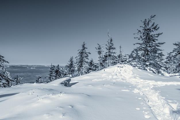 Landschap van sneeuw