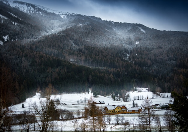 Landschap van sneeuwstorm over oostenrijkse alpen begroeid met bos